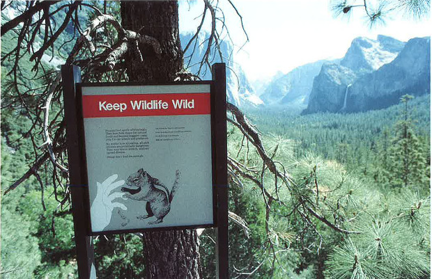 Aten - Slogan sous forme d'onomatopée : waïd-waïd ! et graphisme très parlant pour un panneau sur la protection de la vie sauvage. (Yosemite National Park, USA)